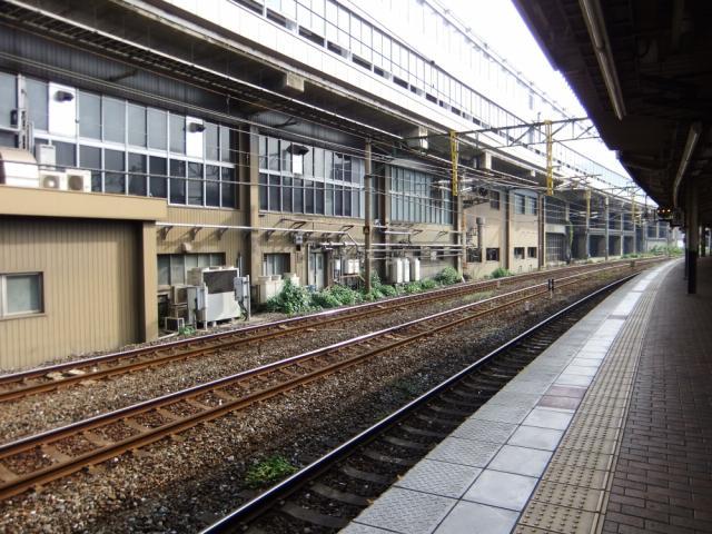 003+1_20101021200652.jpg