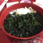 hayama 201509 wakame udon