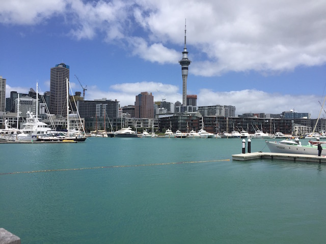 auckland city from north harbour