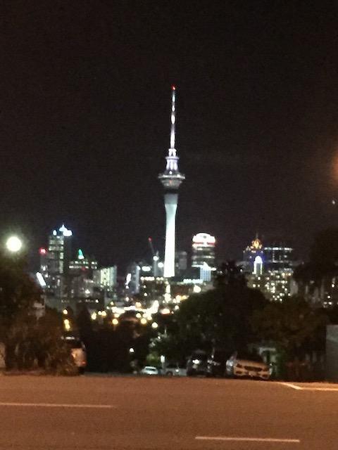 from-ponsonby-to-auckland-city