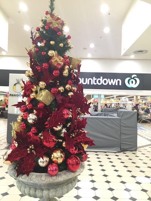 countdown newmarket tree