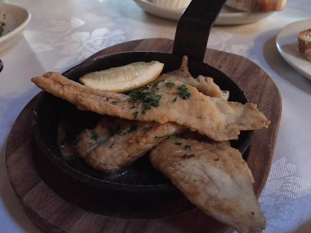 vivace flounder