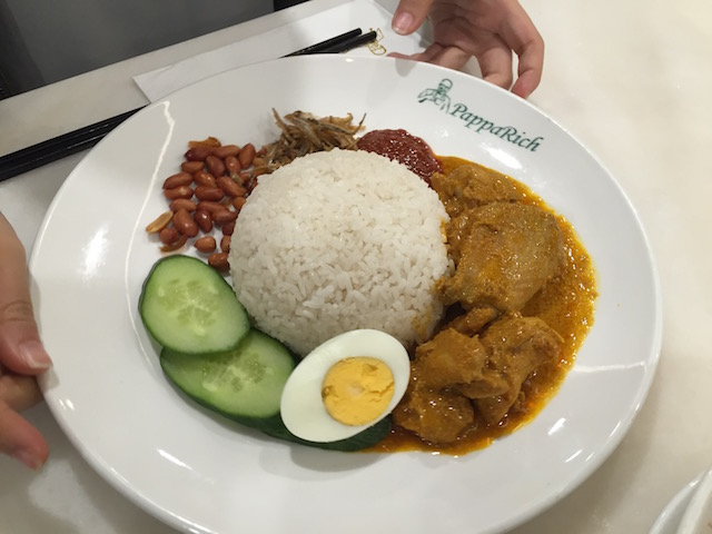 papparich chicken curry2