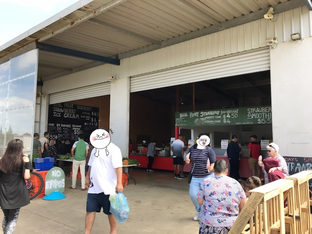 strawberry farm 201811 entrance
