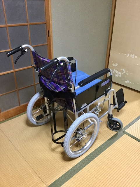 daneko illness 2020 wheelchair2