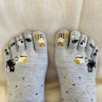 daneko illness 2020 cat socks