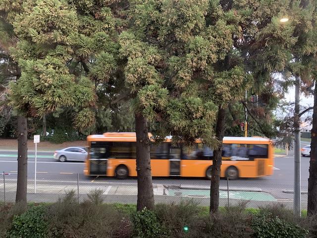 isolation hotel 2020 bus