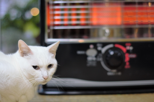 2021 winter heating