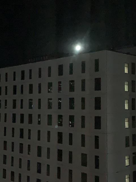 202105 nz isolation room day11 moon